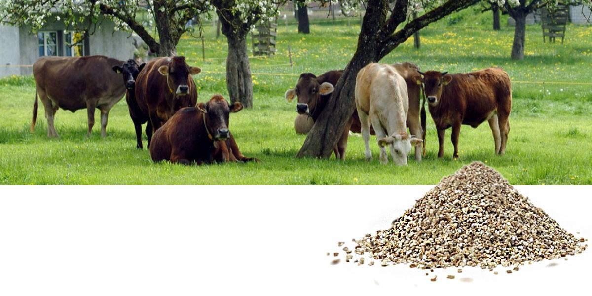 1200-600-Vermiculite-Landwirtschaft