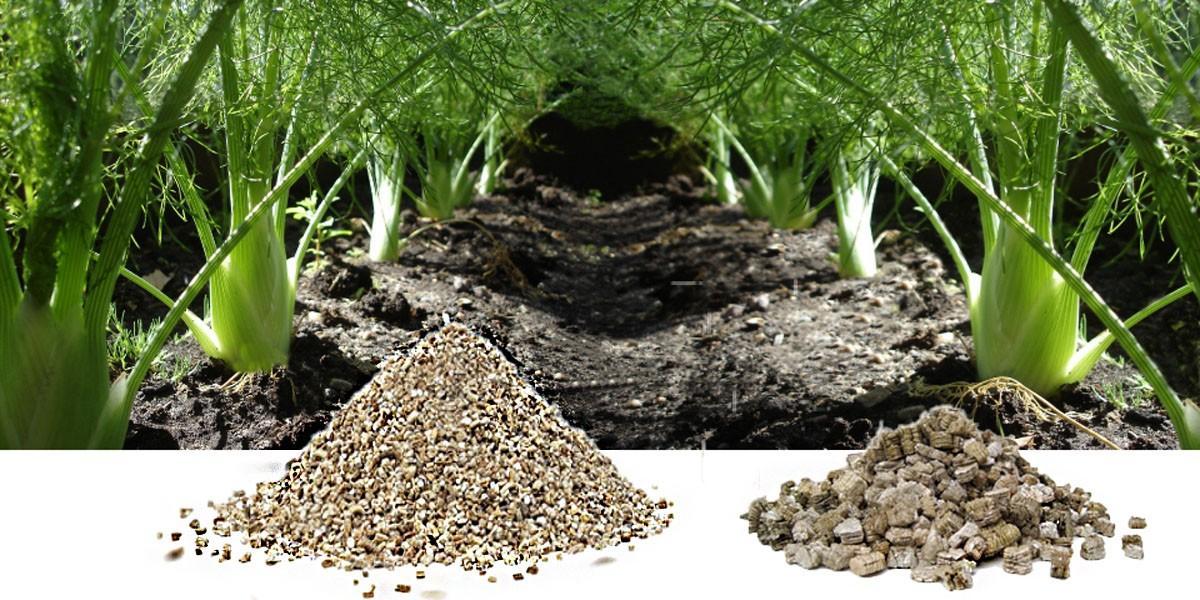 1200-600-Vermiculite-gartenbau